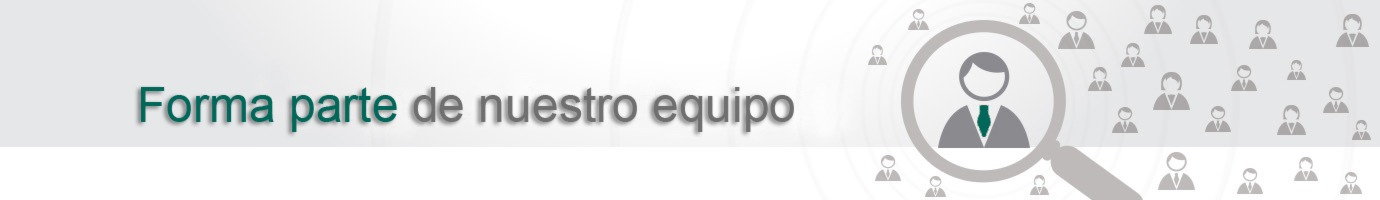 Forma parte del equipo de Larraioz Elektronika