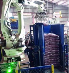 Caso de éxito del robot CP300L Kawasaki y NOVO